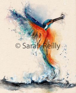 Kingfisher by Sarah Reilly, Suffolk Artist, Love Country UK