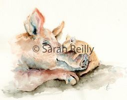 Love you... little pig x by Sarah Reilly, Suffolk Artist, Love Country UK