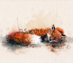 Sleepy Mr Fox by Sarah Reilly, Suffolk Artist, Love Country UK