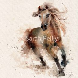 Wind in Her Hair by Sarah Reilly, Suffolk Artist, Love Country UK