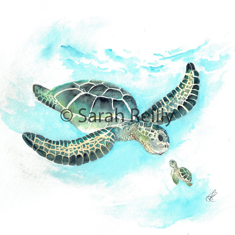 Turtle Tail by Sarah Reilly, Suffolk Artist, Love Country UK