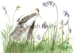 Blissful Badger by Sarah Reilly Suffolk Artist Love Country UK