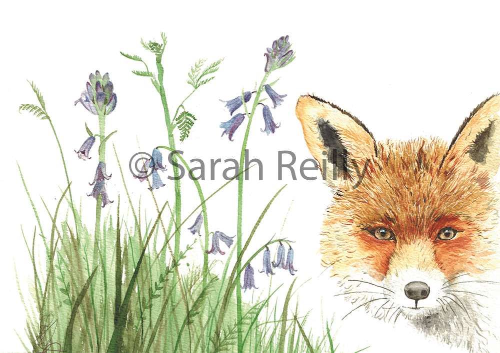 Ever Watchful Fox by Sarah Reilly Suffolk Artist Love Country UK